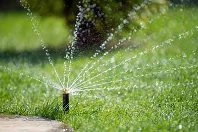 Fraser Valley Landscaping Grass Watering Tip